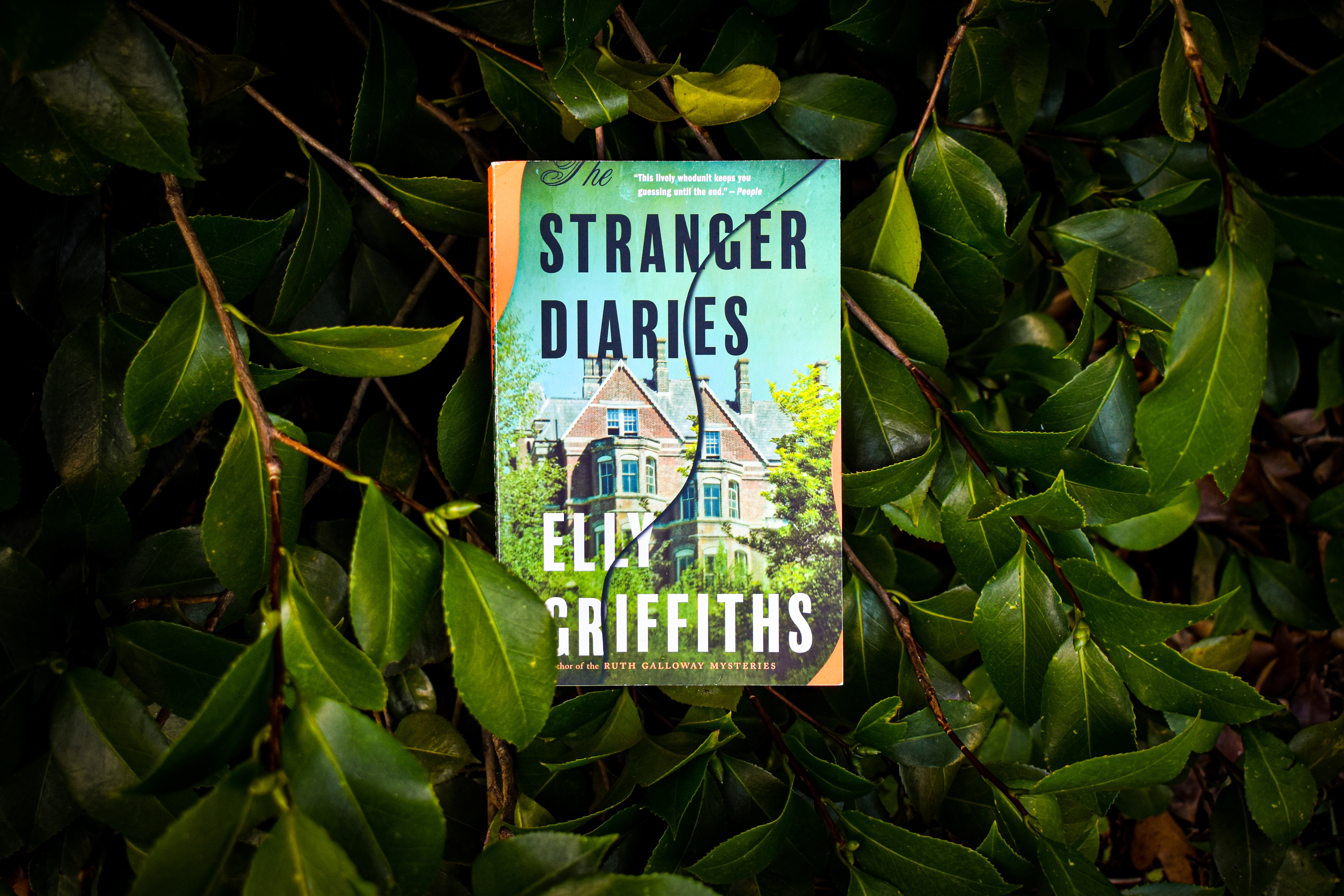 Button to Purchase The Stranger Diaries.