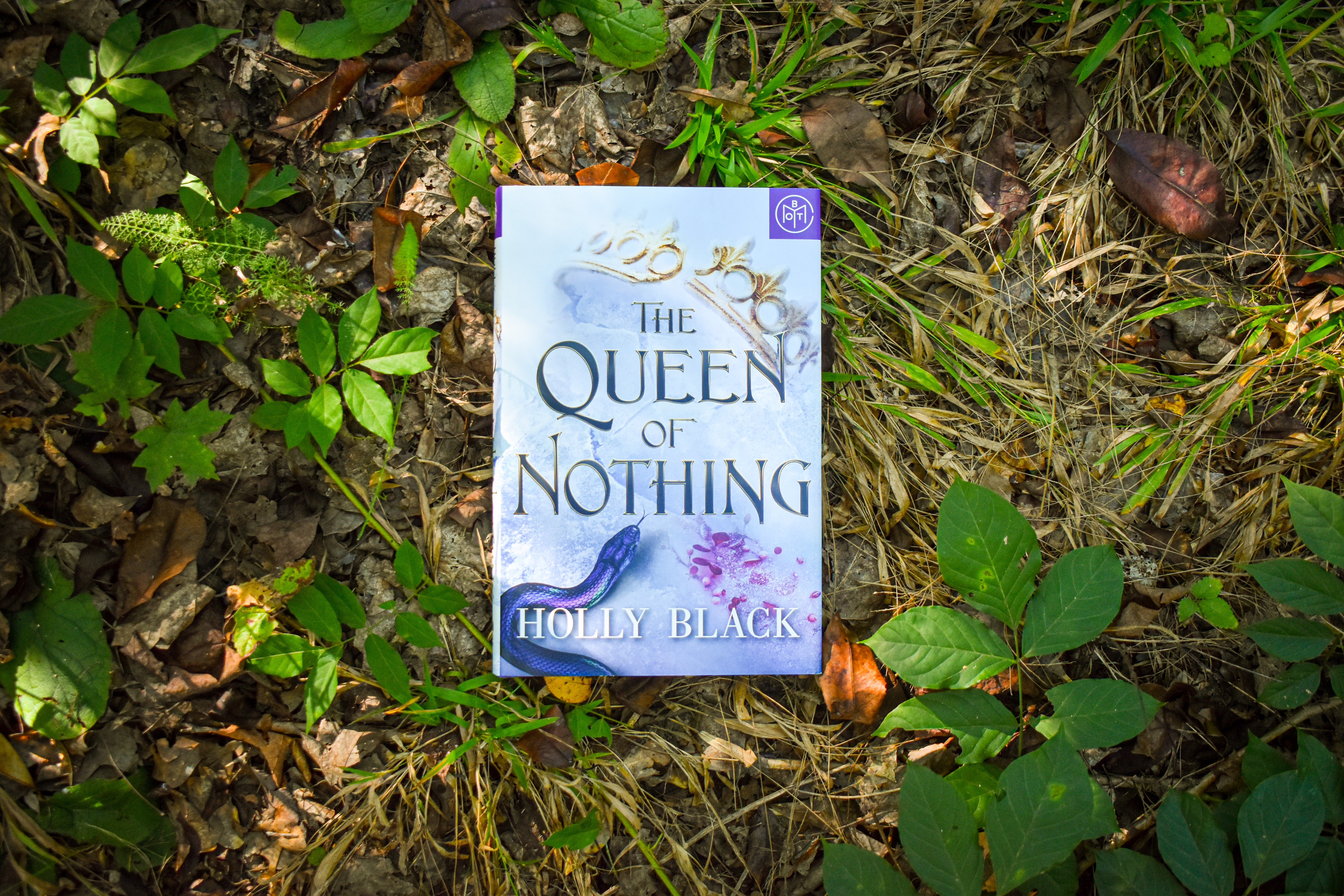 Button to purchase The Queen of Nothing- 10 books to read